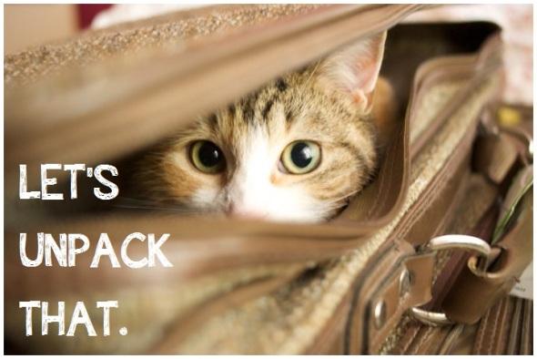 Let's unpack that - anti-oppression baby animals